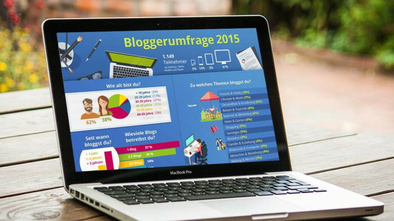 Bloggerumfrage 2015, Infografik