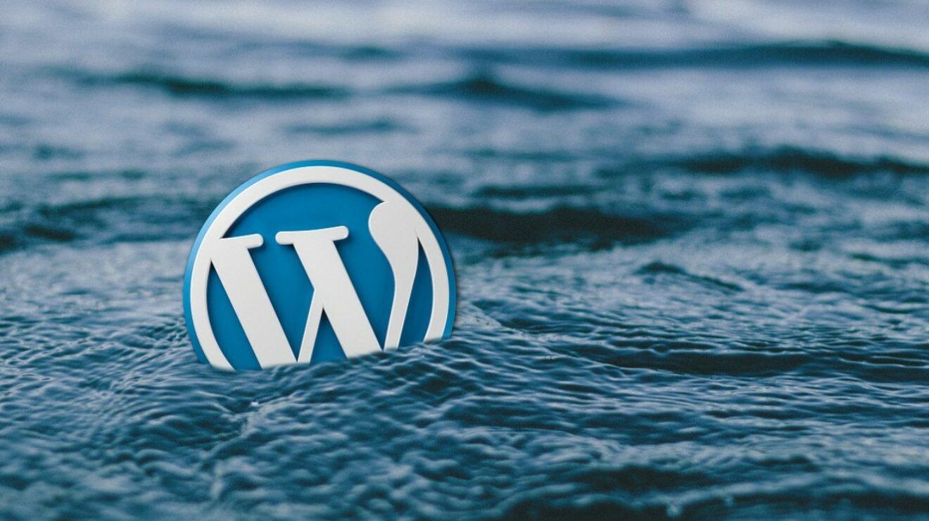 Wordpress Logo im Wasser